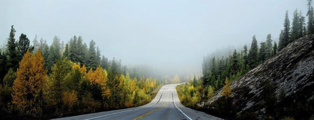 efficiency cost effectiveness road ahead