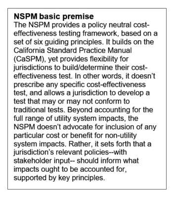 NESP basic premise