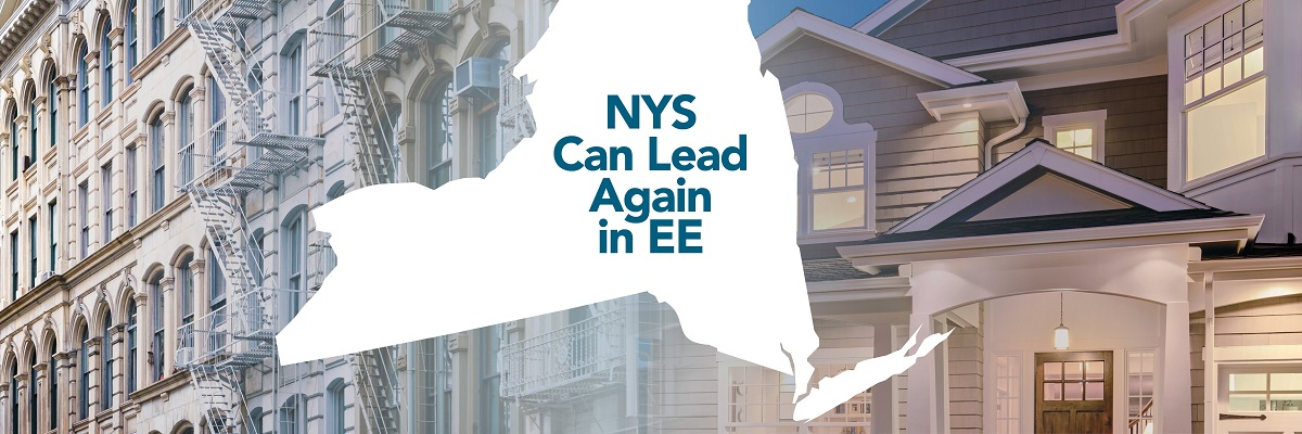 New York State Energy Efficiency