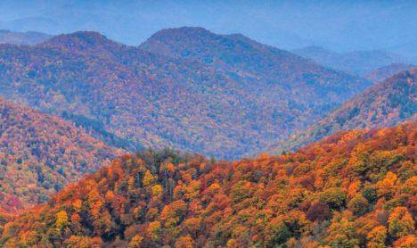 North Carolina State Resources