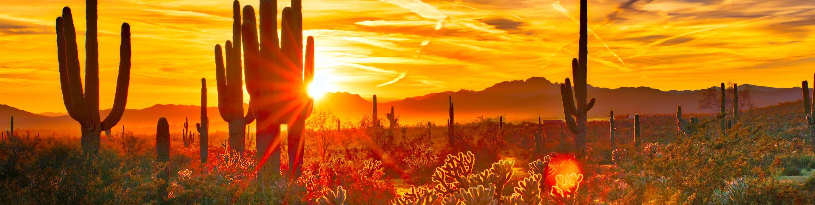 Arizona State Resources