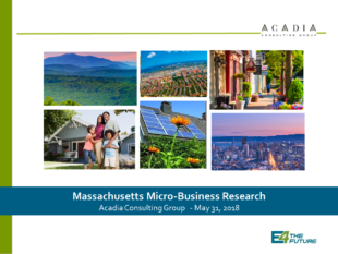 Massachusetts micro-business research on energy saving opportunities